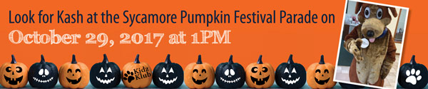 Look for Kash at the Sycamore Pumpkin festival parade: oct. 29, 2017